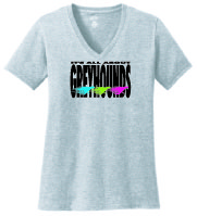P-25 - It's All About Greyhounds Ladies V-Neck T-Shirt